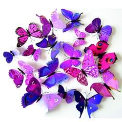 opțiuni de fluture de fier